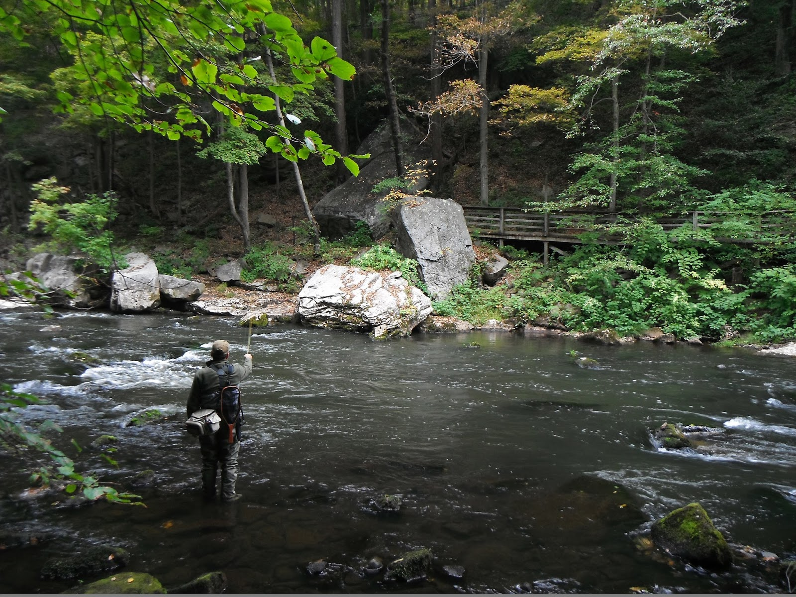 Western maryland fly fishing starting to feel like fall for Fishing in md