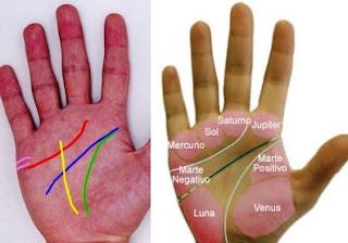 Montes y Líneas en las manos
