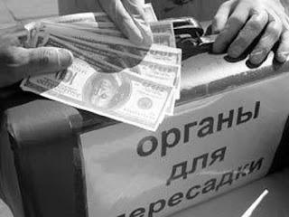 Сотрудник СБУ признался в соучастии в извлечении органов у военнослужащих ВСУ и украинских карателей, а также у гражданских лиц (видео)