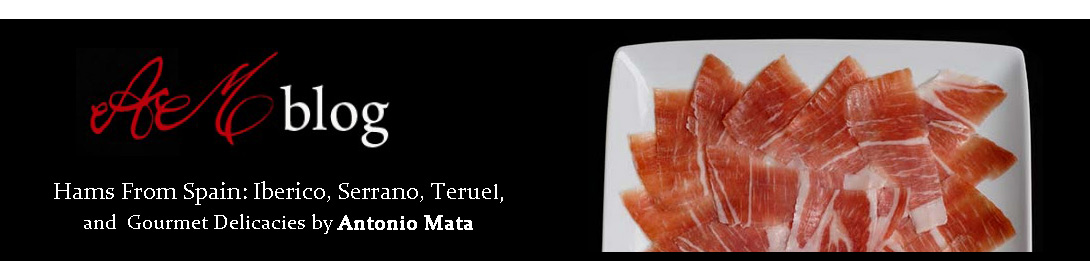 HAMS FROM SPAIN: IBERICO, SERRANO, TERUEL, BY ANTONIO MATA, GOURMET DELICACIES.