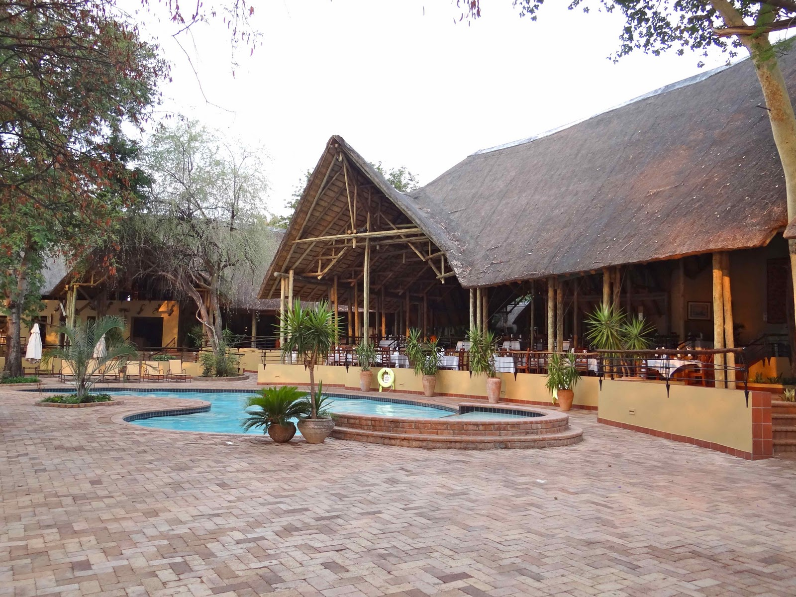 our african adventure day 18 19 chobe national park. Black Bedroom Furniture Sets. Home Design Ideas