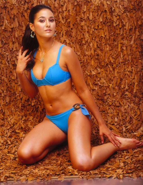 Emmanuelle Chriqui In Bikini