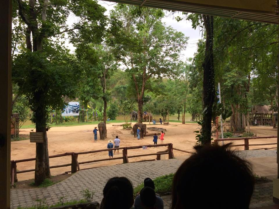 how to get to thai elephant conservation center