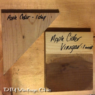 Solution for apple cider vinegar mixed with steel wool