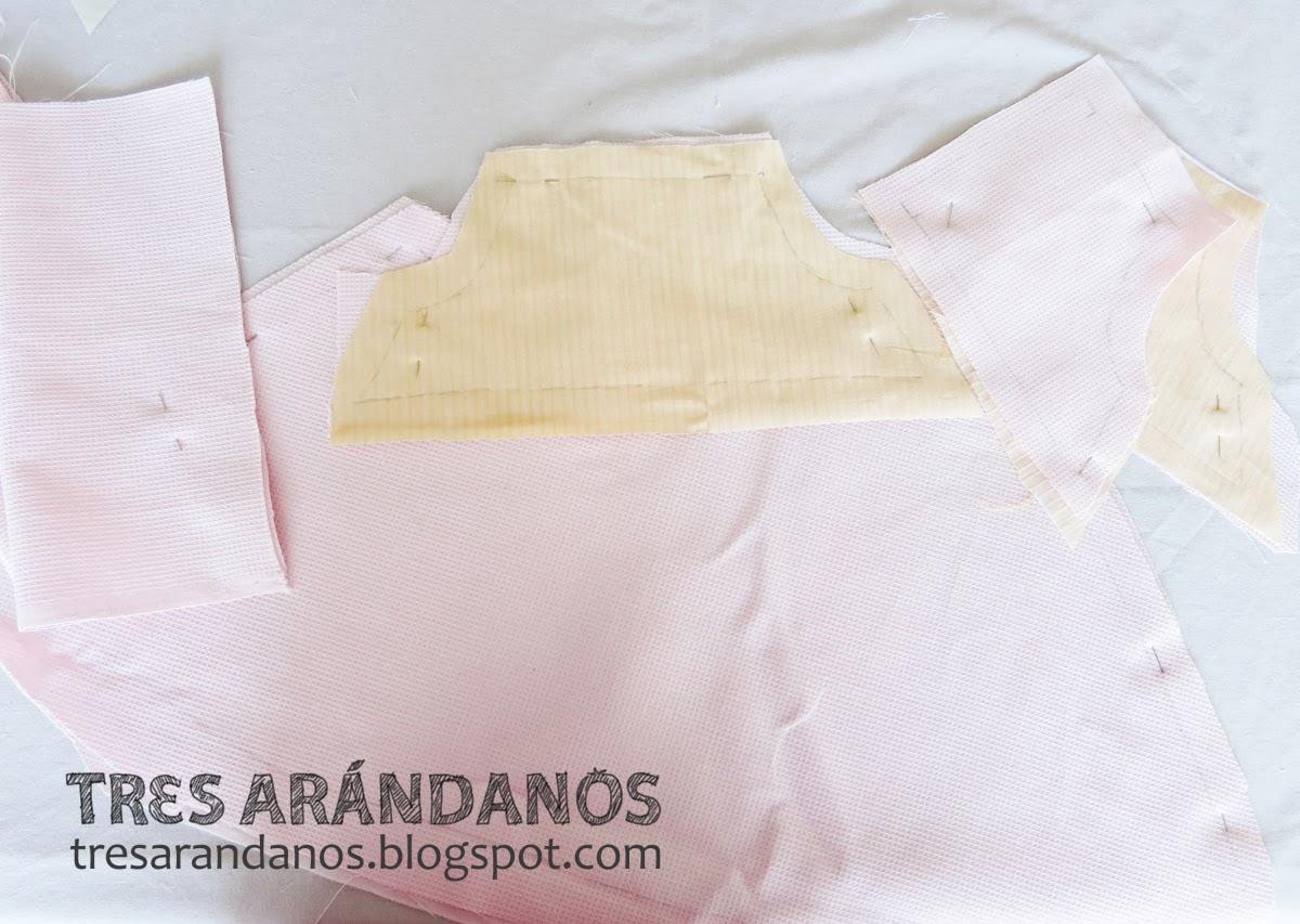 Tres Arándanos: Dieta Limpia, Casa Limpia, Planeta Limpio: Vestido ...