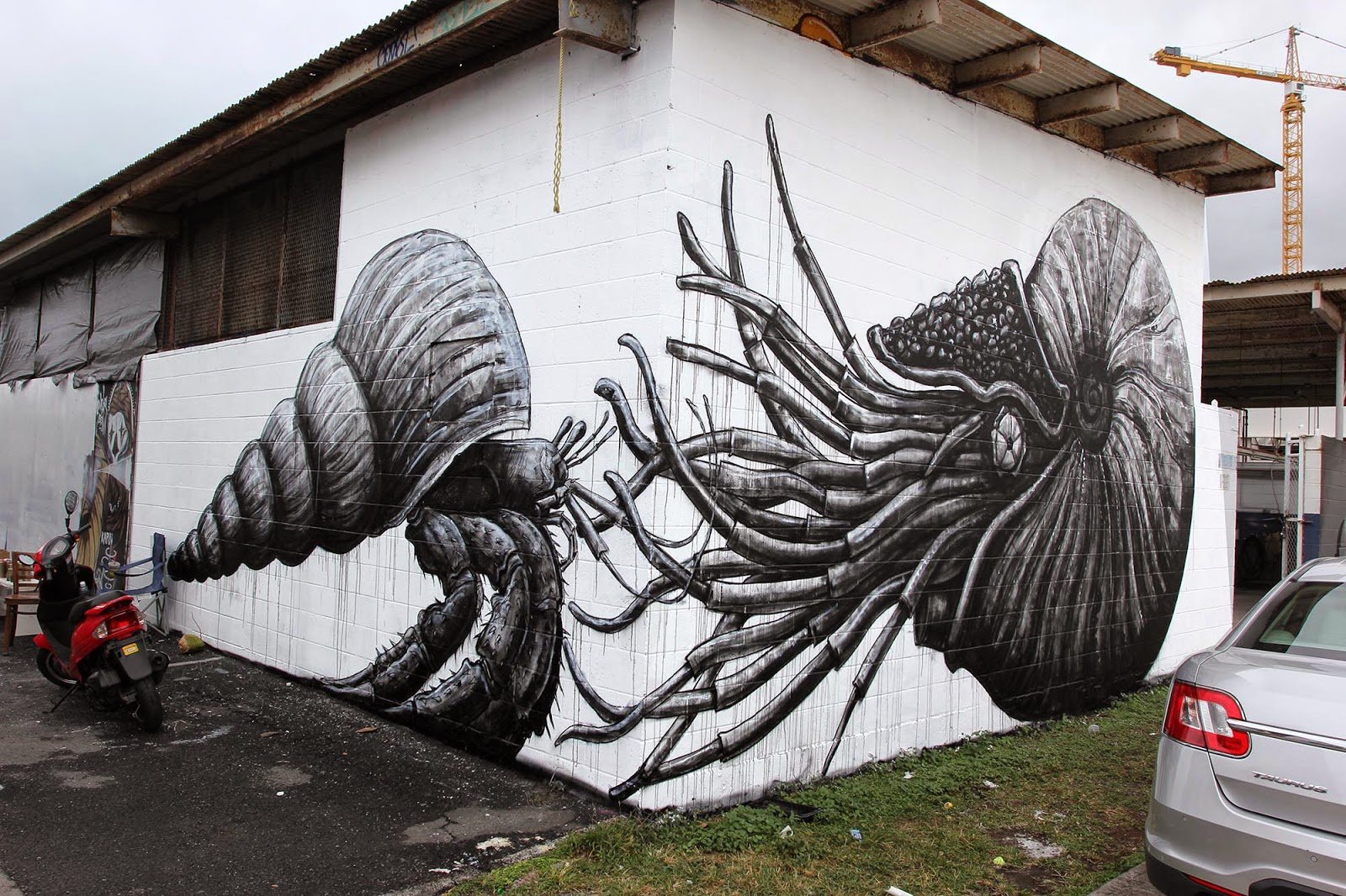 ROA is currently in Honolulu, Hawaii where he flew in to participate in the fifth edition of Pow! Wow! Hawaii '15.