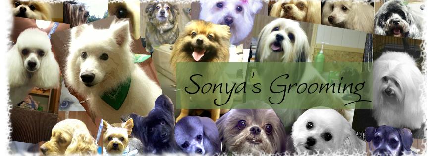Sonya's Grooming