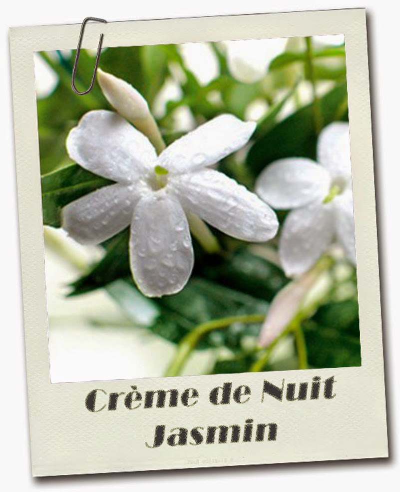 Crème de Nuit Anti-Rides Jasmin Home Made
