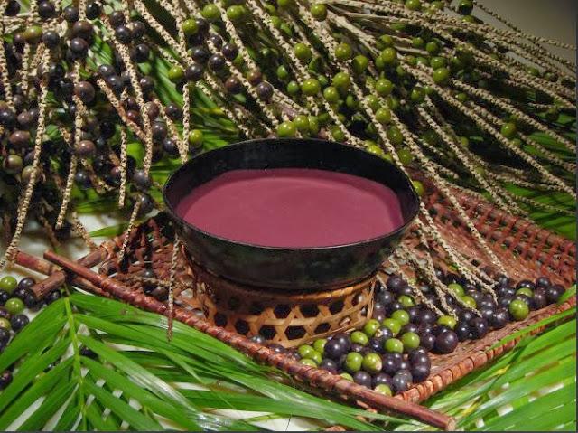 Açaí antioxidante benefícios