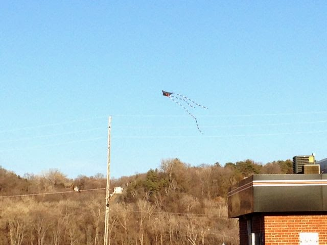 kite flying near the St. Croix in Stillwater
