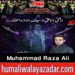 http://www.humaliwalayazadar.com/2014/11/mammad-raza-ali-nohay-2015.html