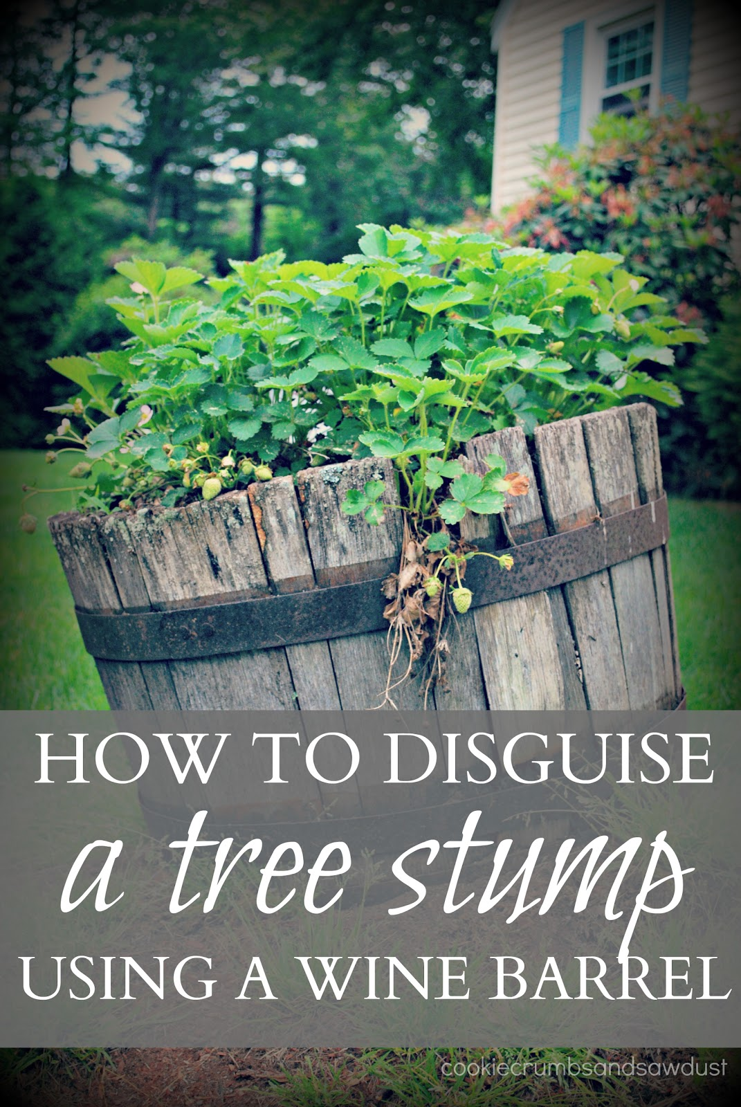 How To Decorate A Tree Stump In Your Yard Myideasbedroomcom