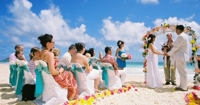 How to Get the Best out of the Wedding Season