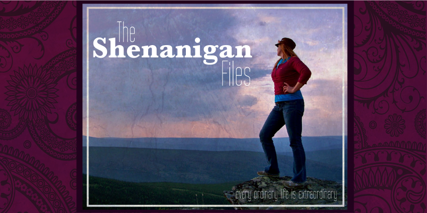The Shenanigan Files