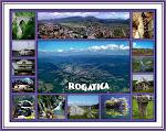 Rogatica 1
