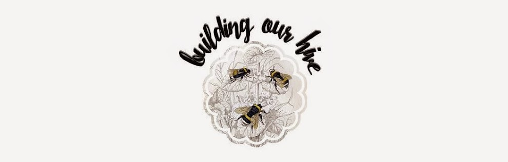 Building Our Hive