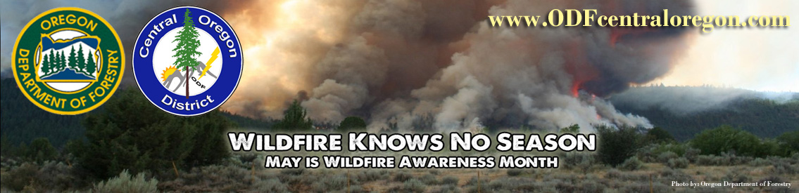 Oregon Department of Forestry - Central Oregon Burn Permit Information