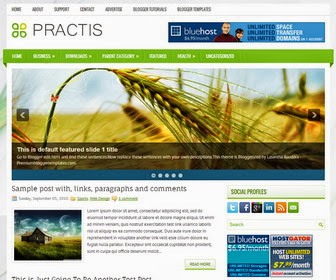 Practis Blogger Template