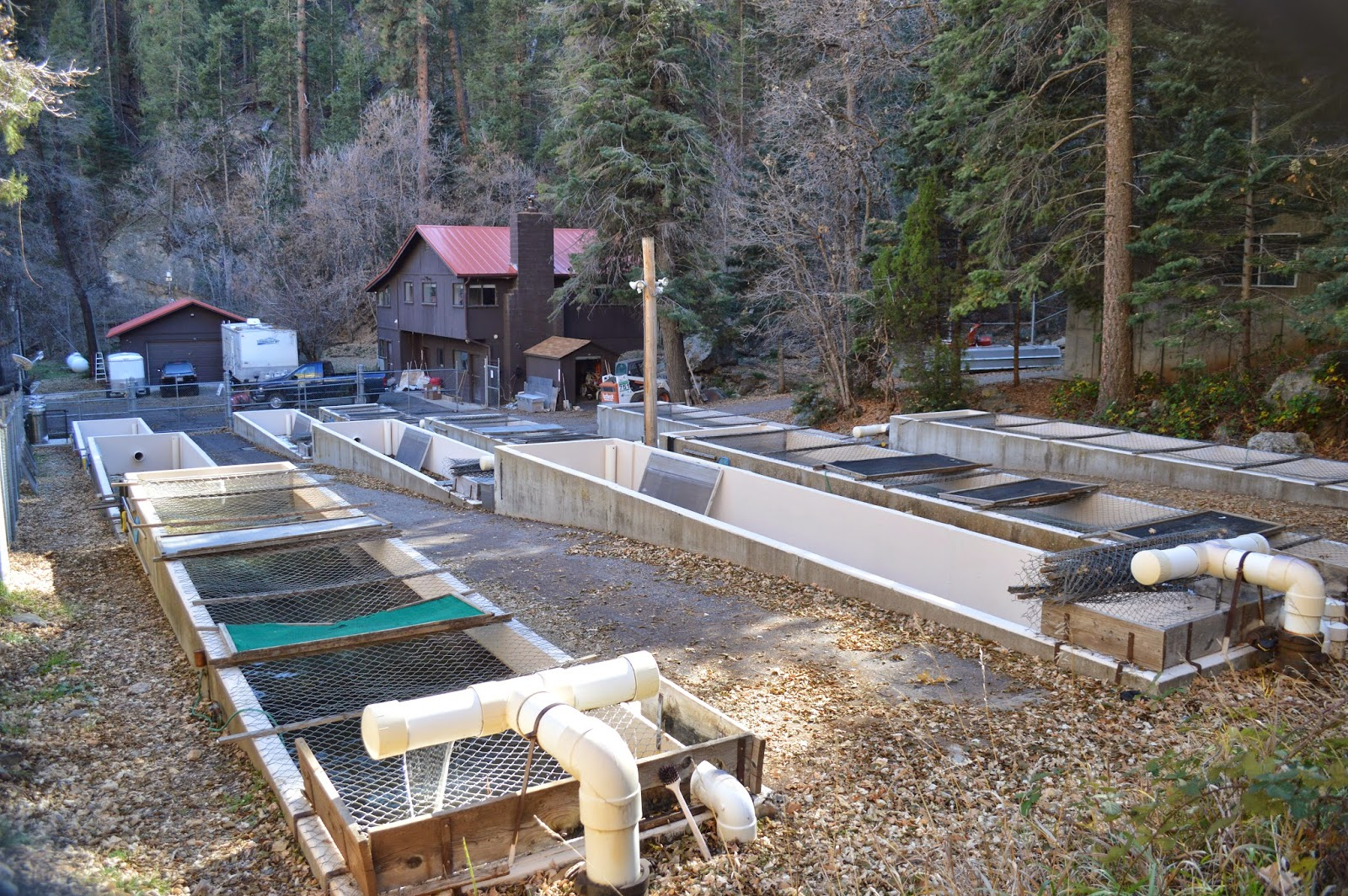 Mark Thomas - Geology Blog: STERLING SPRINGS FISH HATCHERY