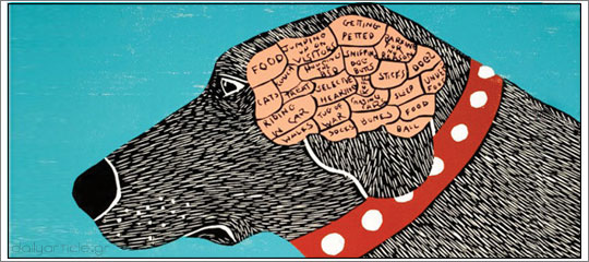 Στο μυαλό του σκύλου: Τι πραγματικά νοιώθει για εμάς;