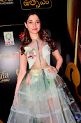 Tamanna At South IIFA Utsav-thumbnail-6