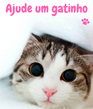 Você gosta de gatinhos também?
