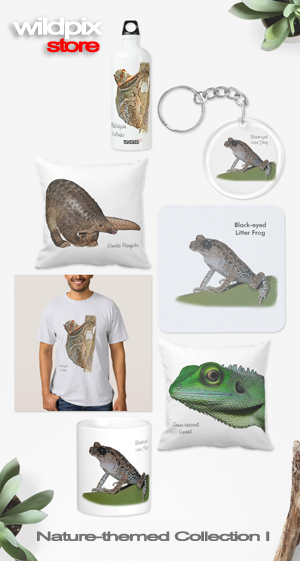 Wildpix Store - Nature-themed Collection I