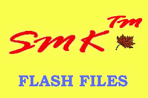 ALL CHINA MOBILES - FLASH FILES