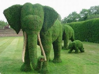 Grass Sculpture of Funny Elephants