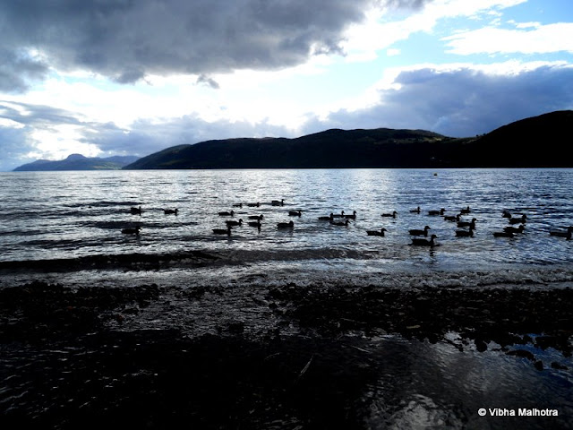 On my solo trip to Scotland, I had the Golden opportunity to visit Loch Ness, the lake that is rumoured to house the legenedary Loch Ness Monster. Loch (Pronounced Lock), in Scottish Gaelic and Irish means Lake. Loch Ness itself is the second largest lake in Scotland after Loch Lomond though it's great depth makes it the one with the maximum volume of water, enough to feed the River Ness. No wonder then that in its depth Nessie (the pet name for the monster) is supposed to be living for ages now. You will always, without fail find this van parked on the beach of Loch Ness. This is Nessie-sery Independent Research, a brain-child of Steve Feltham, who has spent the last 9 years of his life living on the beach of the lake, desparately scouring the waters for any odd sign of the Monster. To sustain himself, Steve, makes and sells Nessie Models and memorablia. Unfortunately, he was out when we visited, else I would have definitely bought something from him. This is a model of Nessie's head stuck in the ground outside Steve's