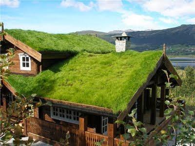 Techos verdes los techos verdes son peque os jardines que for Jardines pequenos verdes