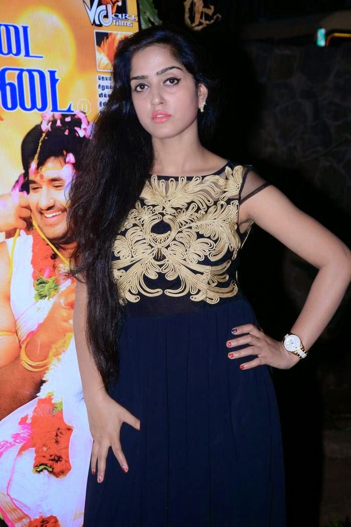 Actress Divya Singh Latest Cute Hot Exclusive Beautiful Black Dress Spicy Photos Gallery At Pagadai Pagadai Movie Press Meet