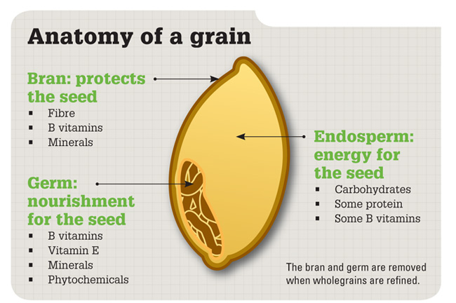 Moveable Feast Blog  Whole Grains   More Gain