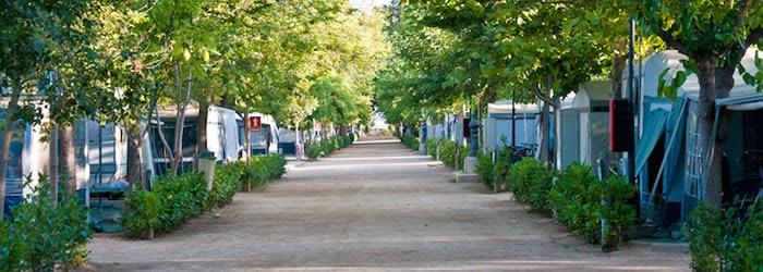 Parcelas del Camping La Tordera