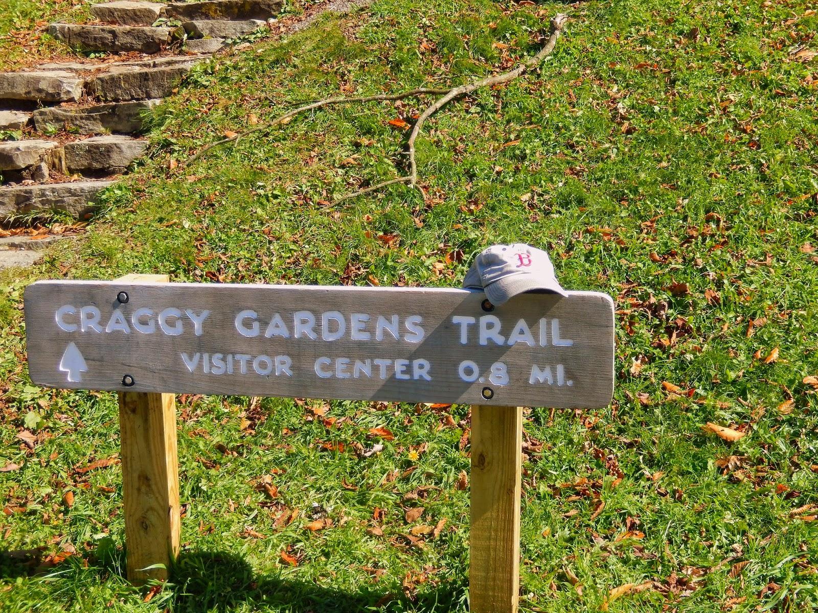 Hiking With A Fat Bald White Guy Black Mountain Range Craggy Gardens