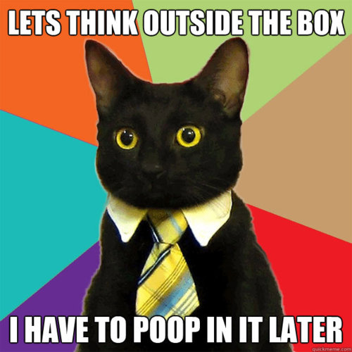 Let S Think Outside The Box Funny Cat Pictures