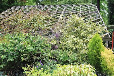 Dunn Gardens - Slat House