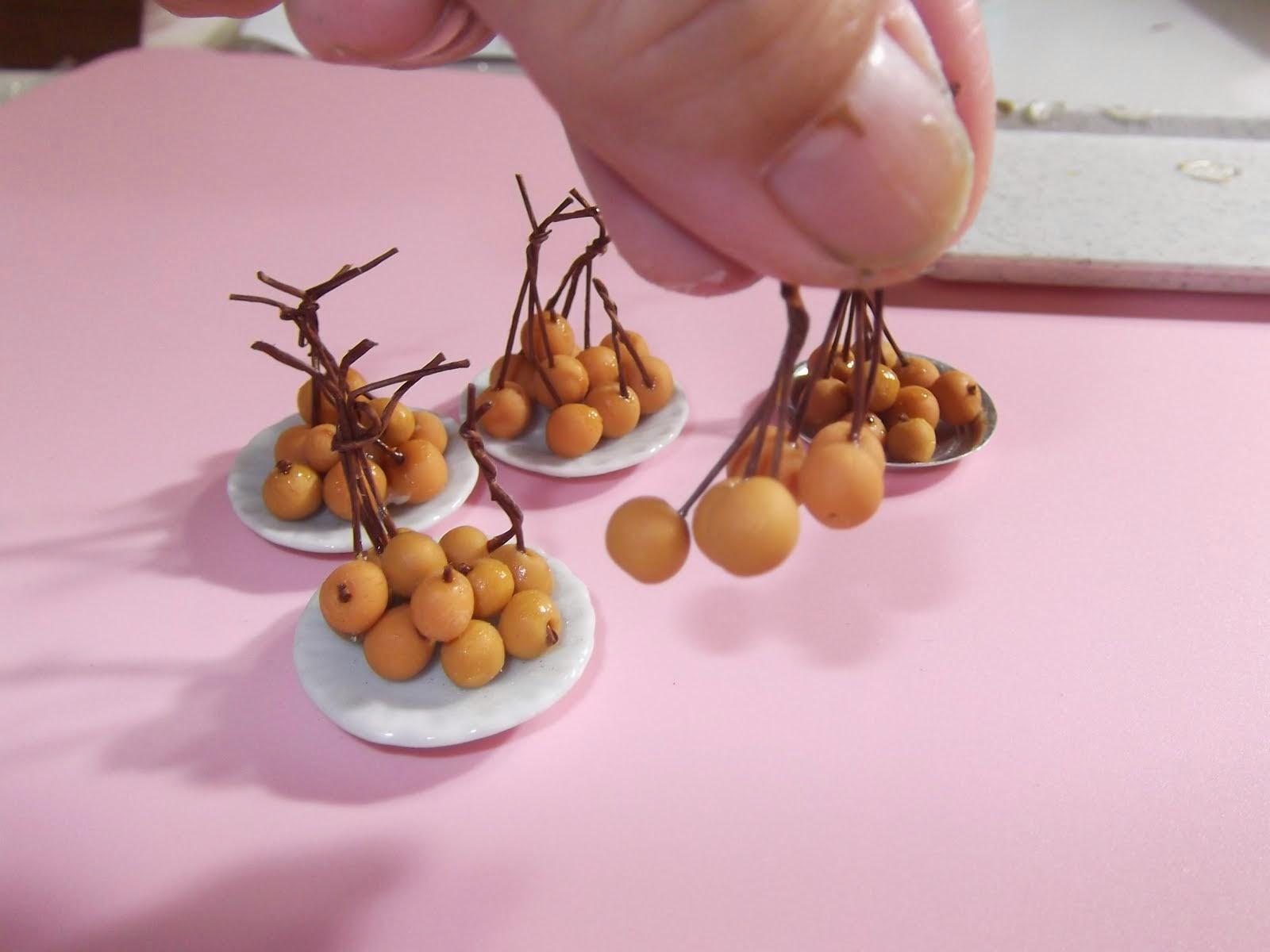 miniature longan