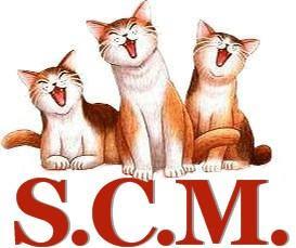 LMG MAG presents 'Saving Cats' in Miami
