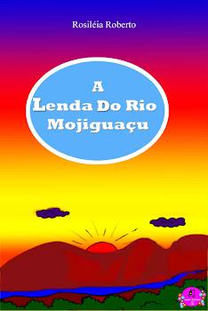 Lançamento Livro infantil: R$ 17,00