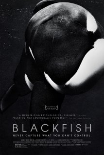 Blackfish (2013) - New Movie Review