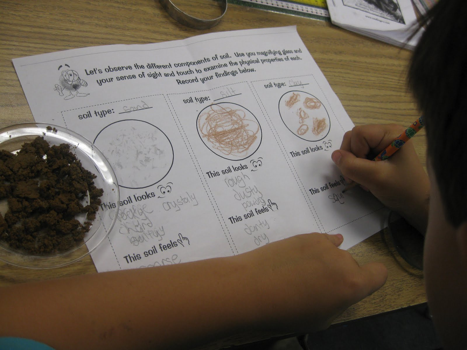 Third grade thinkers types of soil investigation and for Soil 4th grade science