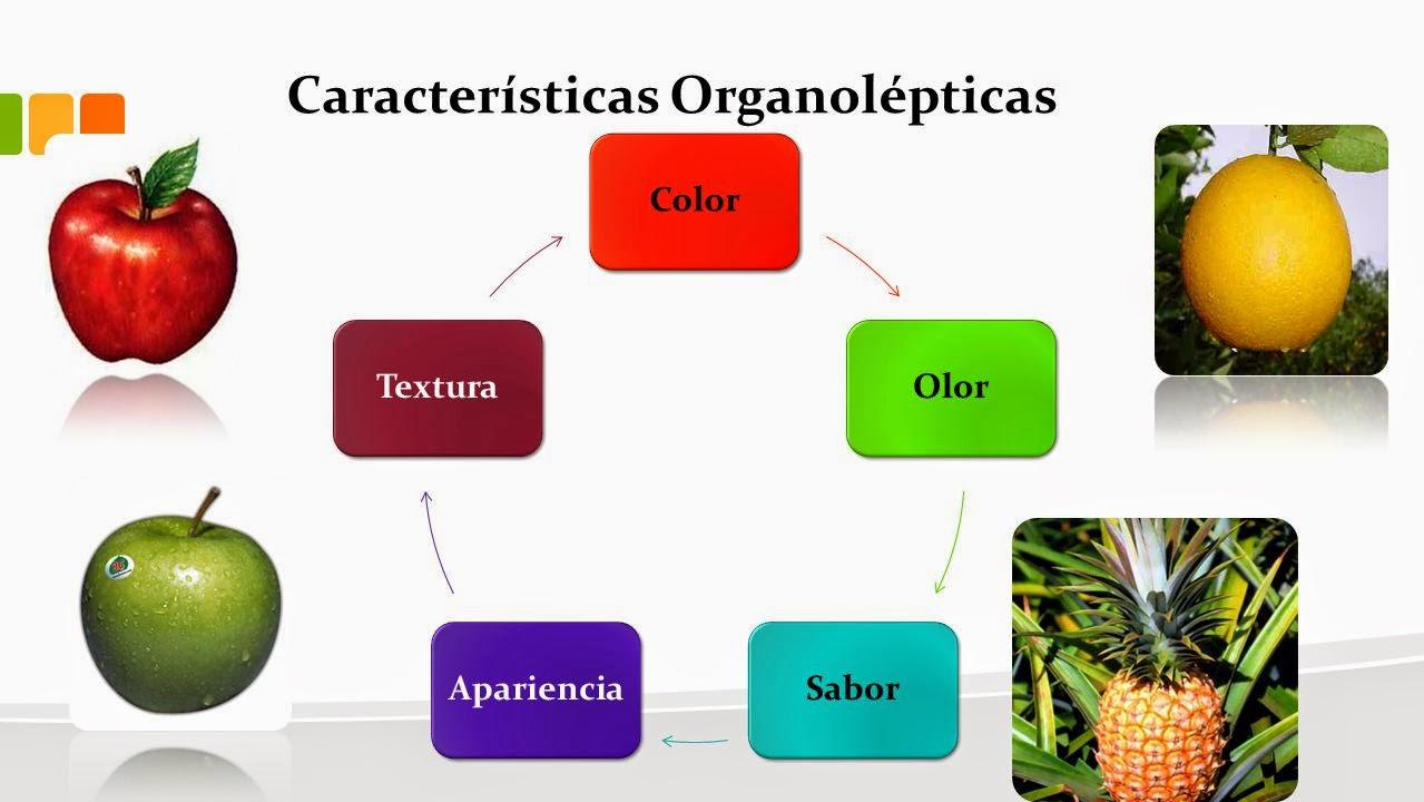 Materia for Marmol caracteristicas y usos