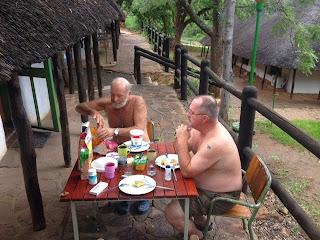 insecten in het Krugerpark