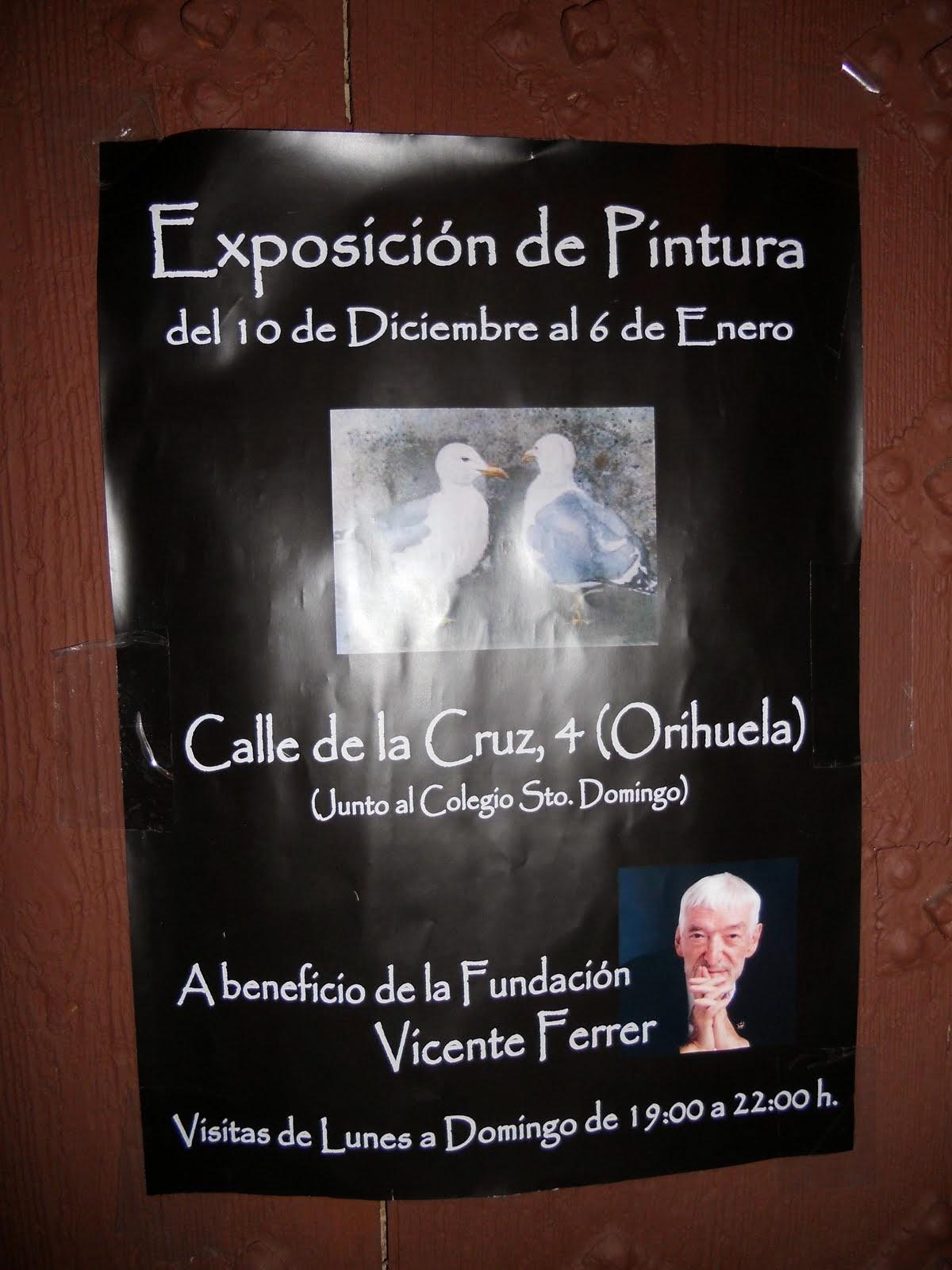 Gaviotas para Vicente Ferrer, el mejor de los catalanes