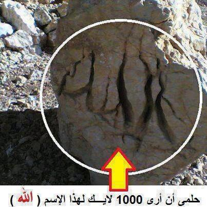 Allah names and allah is everywhere kitab markaz allah names and allah is everywhere altavistaventures Image collections