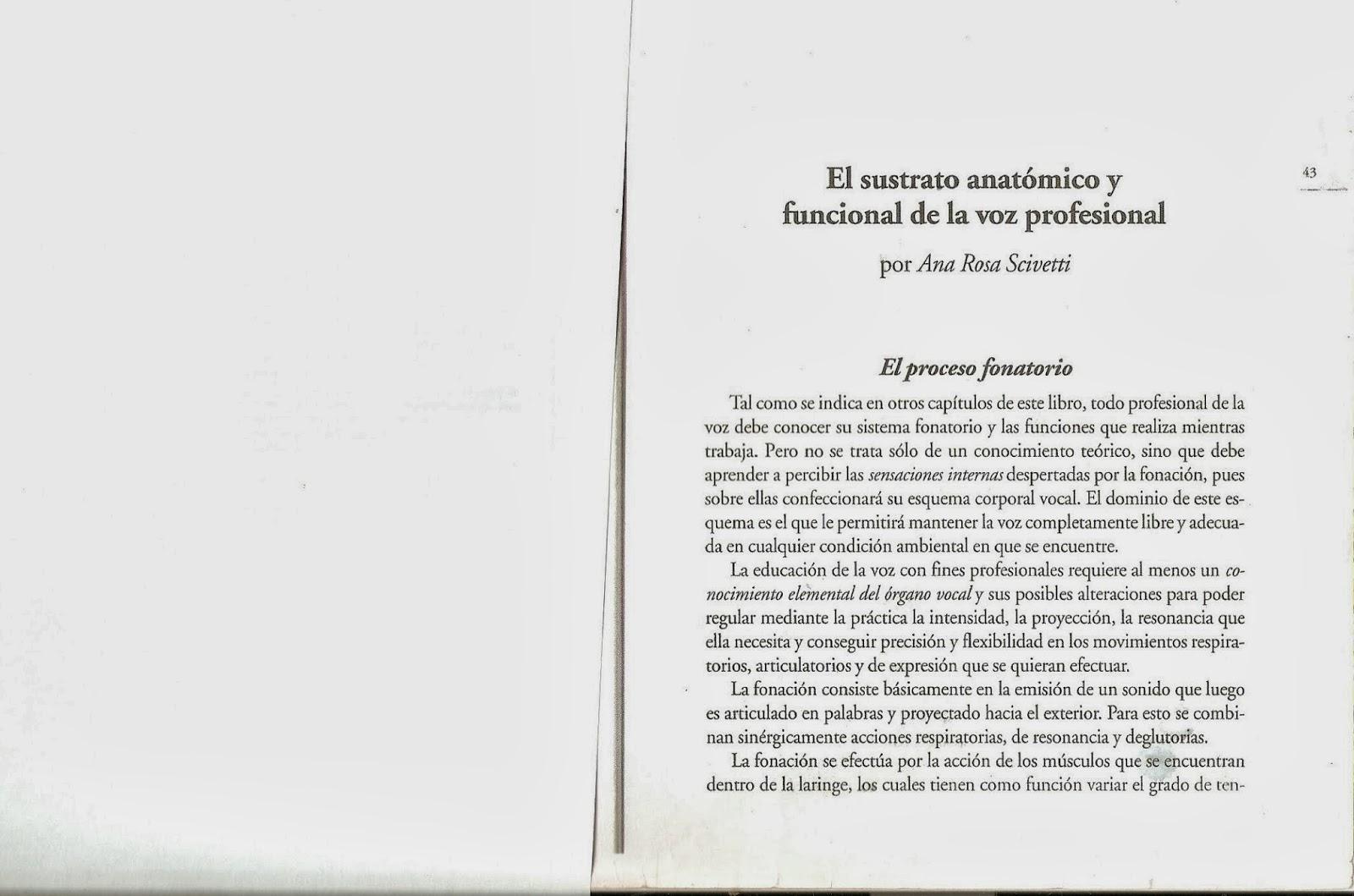 Moderno Temas De Anatomía Y Fisiología Ilustración - Imágenes de ...