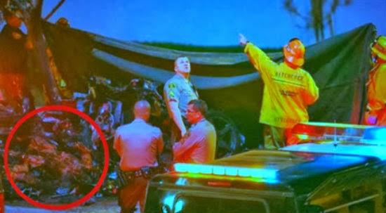 Gambar Mayat Paul Walker Hangus Kini Tersebar