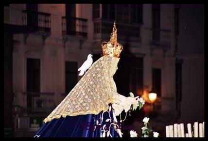 Paloma Blanca....