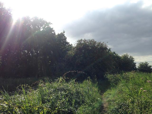 Stormy Skies in Norfolk